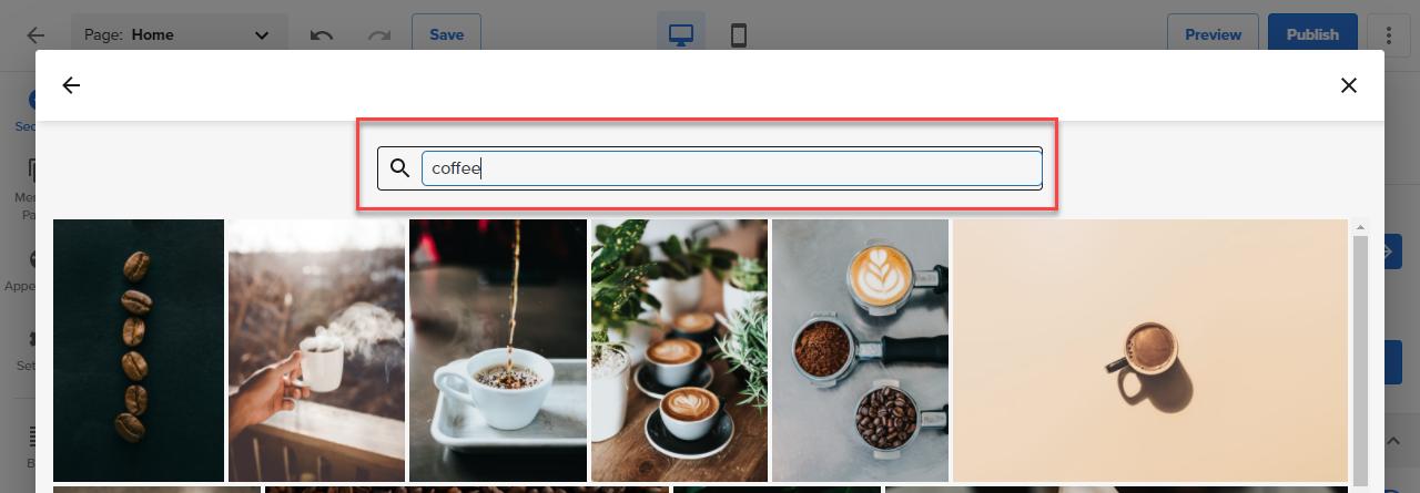search-stock-photo-search-bar